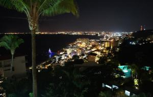PVRPV - Night View of City