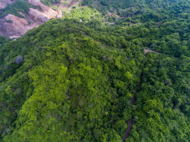 Higuera Blanca, ,Land,For Sale,Carr Sayulita - Punta Mita,16095