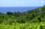 325 Localidad de Litibu, FAFEGA LOT 6, Riviera Nayarit, NA