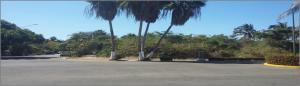 155 Framboyanes St, Lote 155, Riviera Nayarit, NA
