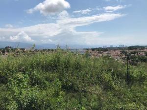 24 Colinas de la Bahia, Lote Colinas de la Bahia, Puerto Vallarta, JA