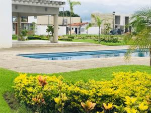 115 Av. Ramon Ibarria Gonzalez, SeaPort Lot 2, Mz 1, Puerto Vallarta, JA