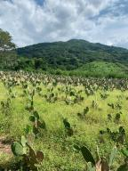 s/n ejido el colesio, Rancho La Desembocada, Puerto Vallarta, JA