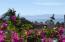 13 avenida los picos 303, Sabbia, Riviera Nayarit, NA