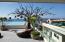 180 Basilio Badillo 509, Nayri, Puerto Vallarta, JA