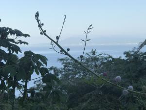 S/N Paseo de las Madreperlas, Lote Susan, Puerto Vallarta, JA