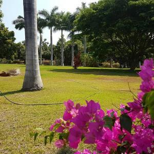 15 Calle Valle de Banderas Paseo PARCEL # 8A-C, Los Mangos, Riviera Nayarit, NA