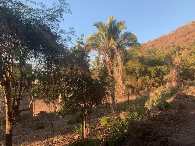 Guayabitos, ,Land,For Sale,Las Brisas esq. Gaviotas,18491