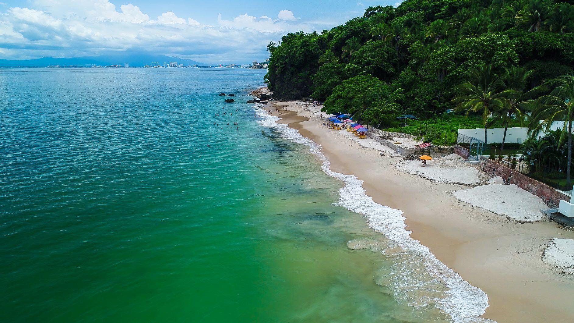 Punta Negra 202