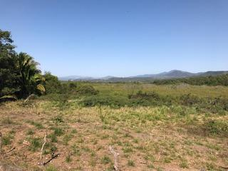 Guayabitos, ,Land,For Sale,Carr Tepic-Puerto Vallarta,19408