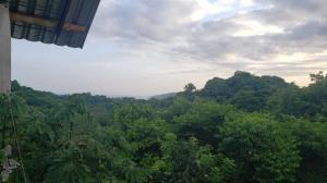 PVRPV -Selva_Vista_Sayulita_Real_Estate_6