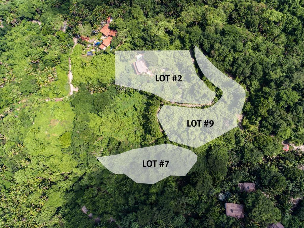 Sayulita, 5 Bedrooms Bedrooms, ,5.5 BathroomsBathrooms,House,For Sale,Camino a Patzcuaro,20349
