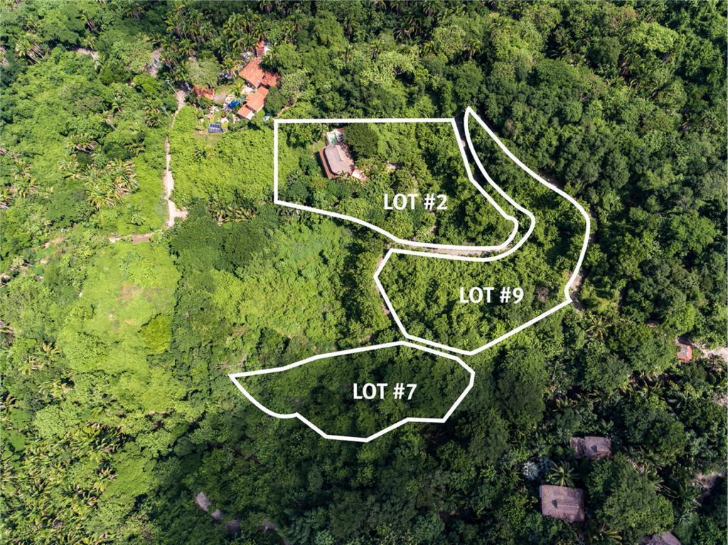 Sayulita, ,Land,For Sale,Camino a Patzcuaro,20353