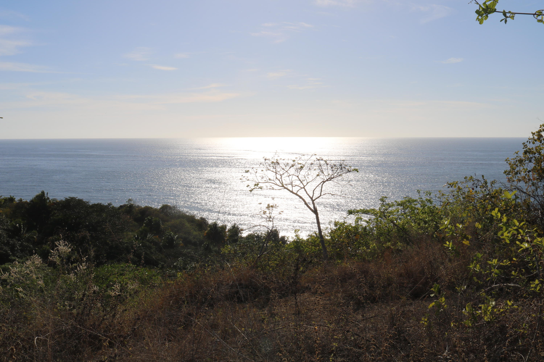 Sayulita, ,Land,For Sale,Camino Playa Carricitos,20986