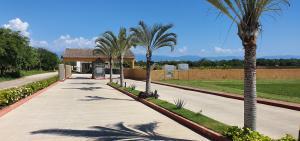 L-10 paseo del agave, LOTE COND. AGAVE AZUL, Riviera Nayarit, NA