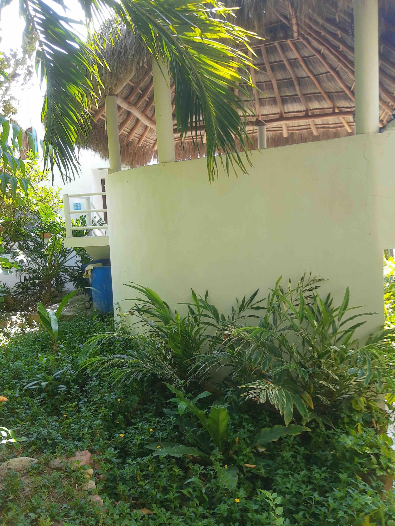 Punta de Mita, 1 Bedroom Bedrooms, ,1 BathroomBathrooms,House,For Sale,MIGUEL HIDALGO,21509