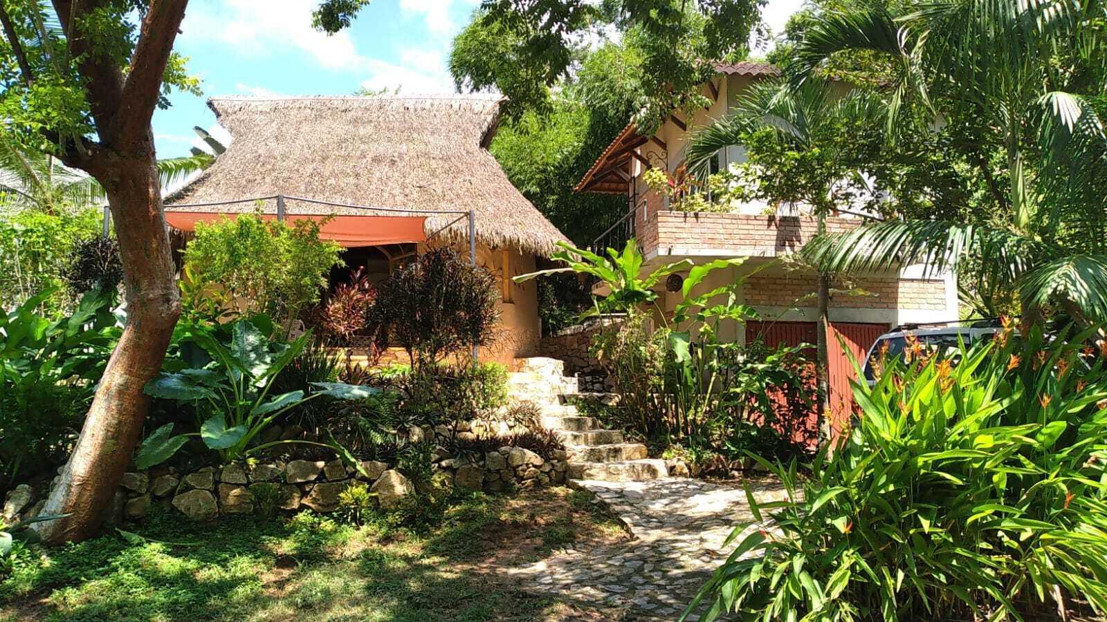 Sayulita, 2 Bedrooms Bedrooms, ,2 BathroomsBathrooms,House,For Sale,s/n,21937