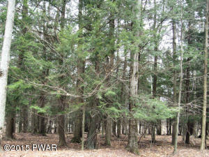Lot 812 Pine Creek Rd, Lakeville, PA 18346
