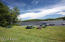Lot 34 Sweetbriar Lane Duck Harbor, Equinunk, PA 18471