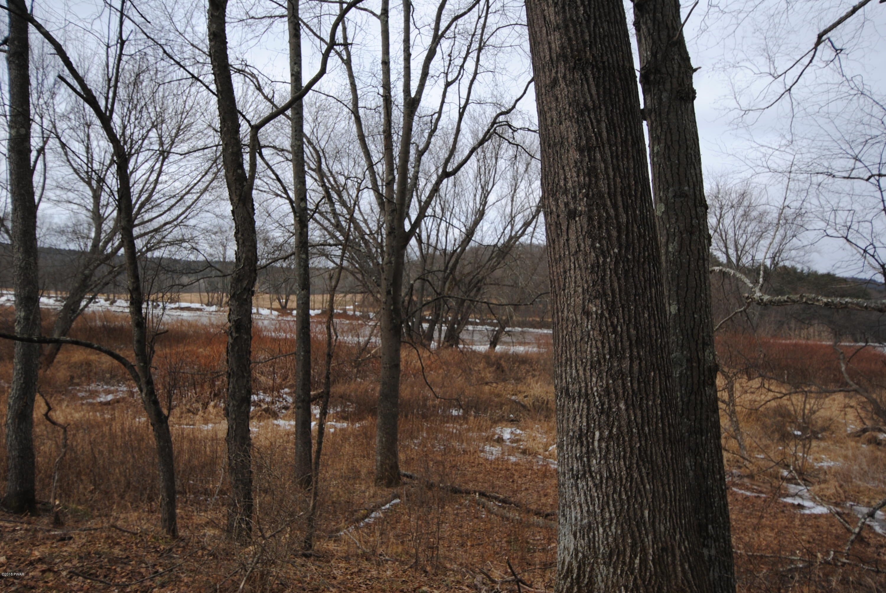 99 ACRE RIVERFRONT LAND TRACT