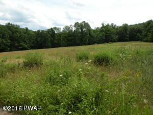 Howe Mountain Rd, Sterling, PA 18463