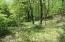 TR 464 Stabler Rd, Lackawaxen, PA 18435