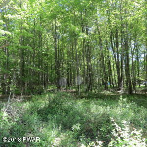 Lot 1 Charphil Dr, Newfoundland, PA 18445