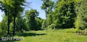 Lot 63 Old Woods Rd, Equinunk, PA 18417