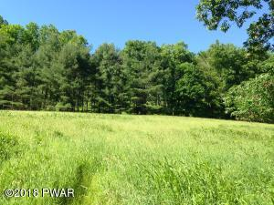 Spruce Swamp Rd, Milanville, PA 18443