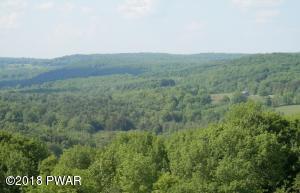 16 Floral Ridge Run, Milanville, PA 18443