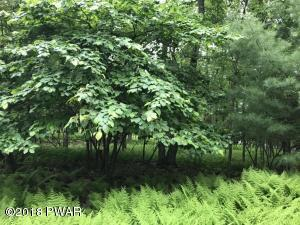 lot Nelson Rd, Milford, PA 18337