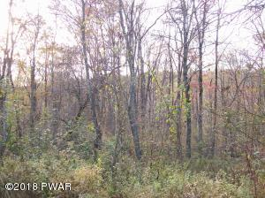 Lot #4 Bunting Rd, Honesdale, PA 18431
