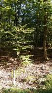 1028 Wildwood Ct, Lake Ariel, PA 18436