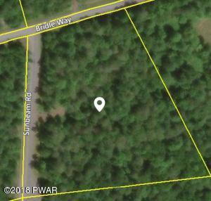 27 Bridle Way, Equinunk, PA 18417