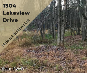 1304 Lakeview Dr, Lake Ariel, PA 18436
