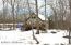 113 Pebble Rock Rd, Lackawaxen, PA 18435