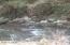 52 Shadigee Creek Rd, Starrucca, PA 18462