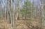 Scattered Pines/hardwoods, lots of mast crop tree's