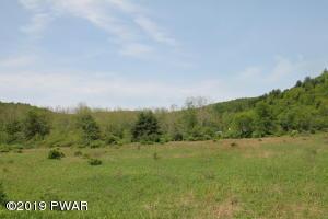 Pine Mill Rd, Equinunk, PA 18417
