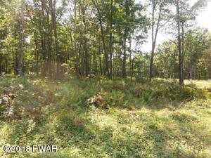 126 Springwood Dr, Hawley, PA 18428