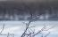 1046 Wintergreen Ct, Hawley, PA 18428