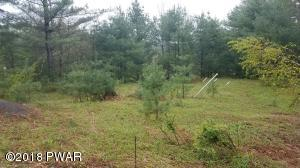 Pine Forest Rd, Greeley, PA 18425