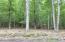 LOT 19 Masthope Plank Rd, Lackawaxen, PA 18435