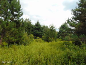 lot 1 Route 390, Canadensis, PA 18325