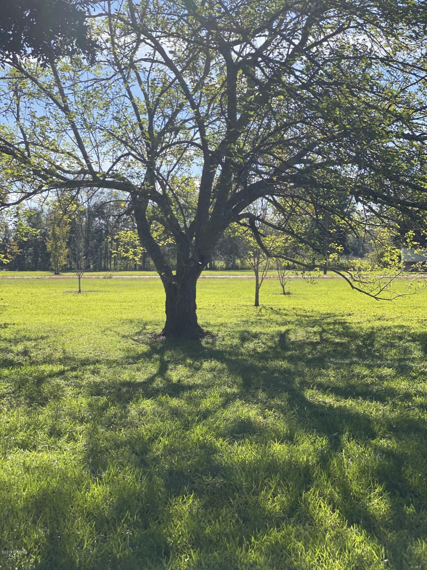 1145 Begnaud Rd Road, Arnaudville, LA 70512 Photo #11