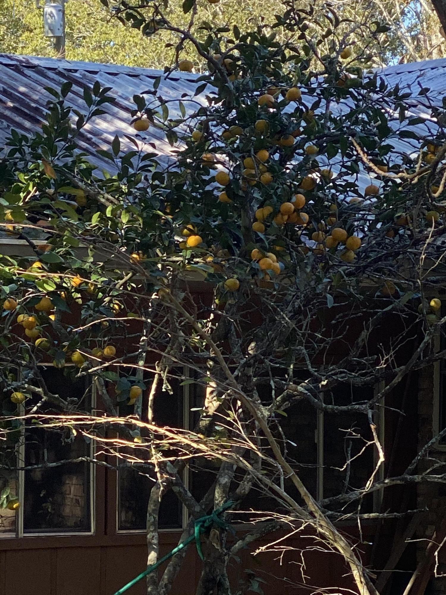 1145 Begnaud Rd Road, Arnaudville, LA 70512 Photo #16