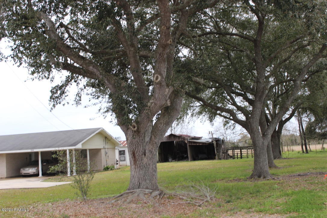 1148 Belaire Cove Road, Ville Platte, LA 70586 Photo #25