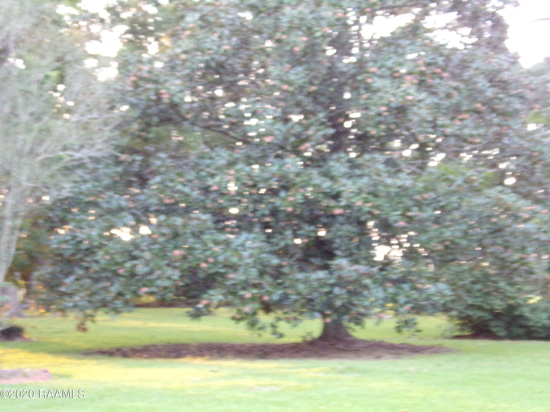 7412 White Oak Hwy, Branch, LA 70516 Photo #33