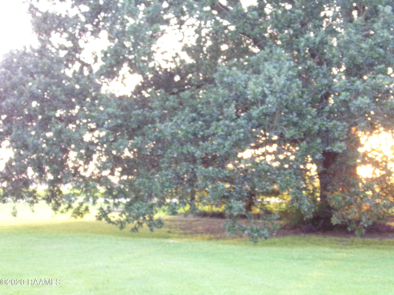 7412 White Oak Hwy, Branch, LA 70516 Photo #34