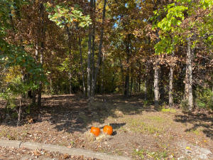 Lot 14 Southridge Court, Moberly, MO 65270